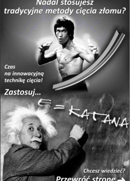 Bruce_Lee_and_Einstein